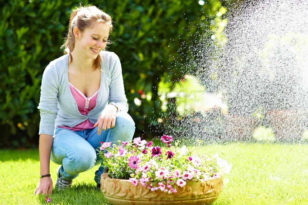 Wasser und Genuss im Sommergarten